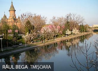 Timisoara Raul Bega